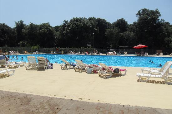 Country Club Castelfusano - Tourist Village, Camping: olympic size pool