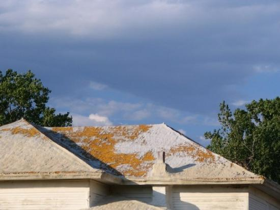 Marmarth, Dakota del Nord: I'm not sure what happened to this roof. It seemed to be coated in some accumulation of mold or