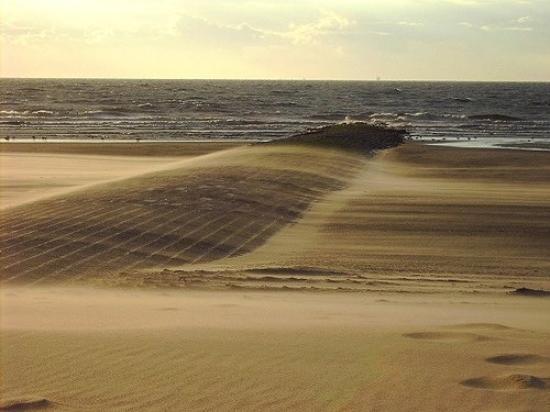 Strand, Bredene