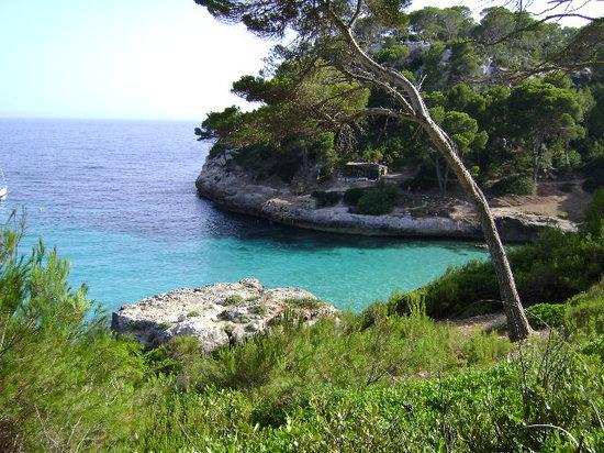 Minorka, İspanya: Cala Mitjaneta