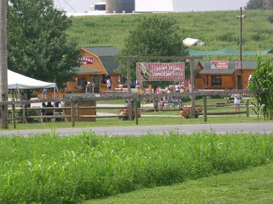 Strasburg Rail Road: Cherry Crest Farm