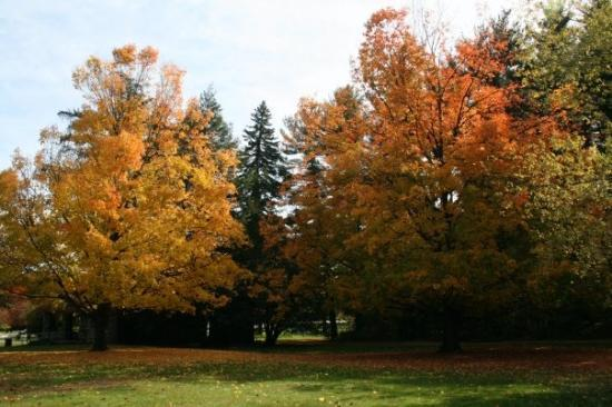 At Greeley Park in Nashua, NH