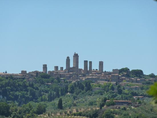 Walkabout Florence Tours: View of San Gimignano from the Winery