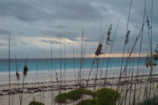 Eleuthera: Pink Sands Beach, Harbour Island