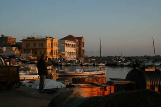 Sur, Liban: Tyre harbor... perhaps they collected the seashells to make the Tyrian purple dye that ancient t