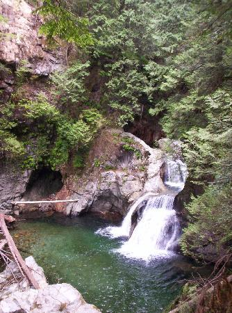 Lynn Canyon Park: When you hike down to the other bridge