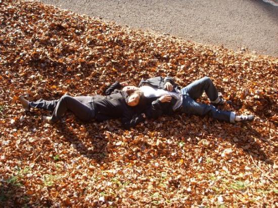 อานเนอมาส, ฝรั่งเศส: Caen las primeras hojas del otoño