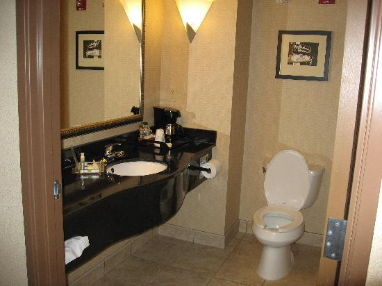 Holiday Inn Battle Creek: bathroom