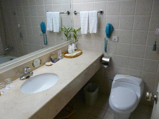 Sun City Hotel: Room Toilet