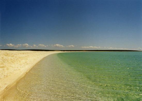 เดนแฮม, ออสเตรเลีย: Westaustralien, Shell Beach