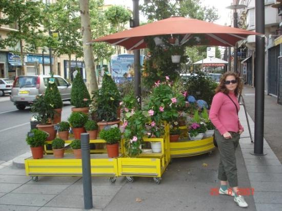 แปร์ปิยอง, ฝรั่งเศส: Un fleuriste dans le Boulevard Clemenceau!