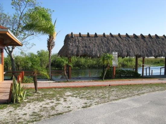 Restaurants Near Hampton Inn Blue Lagoon Miami