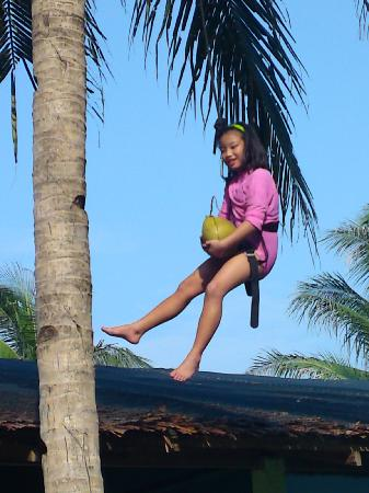 Loola Adventure Resort : my prize for conquering the coconut tree