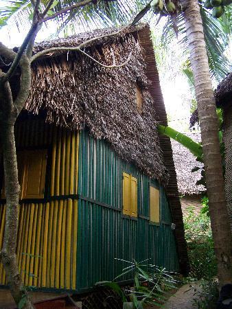Hotel Ambonara Photo