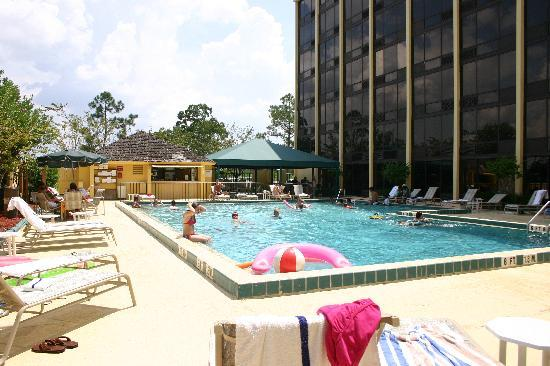 Best Western Orlando Gateway Hotel: pool