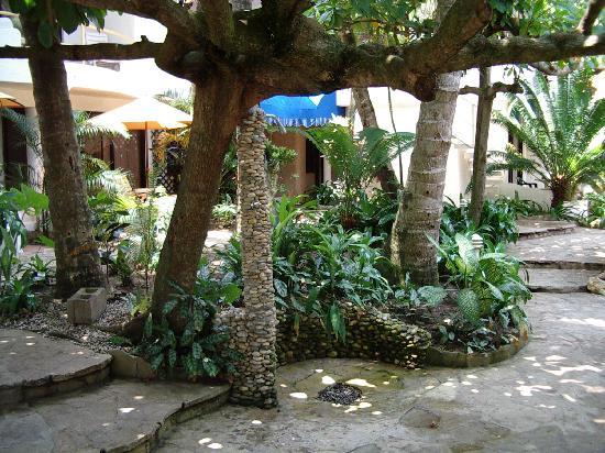 Caribe Surf Hotel: l hotel dans son jardin