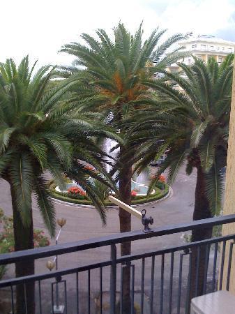 Hotel Calabresi: Vista dalla camera