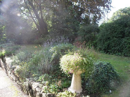 Belmont Guest House: The lovely garden
