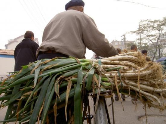 onions on bicycle, Yantai, Nov. 14, 2008