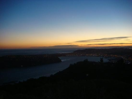 Best place 2 c Dunedins view
