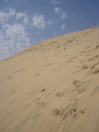 dune du pilat grey sand picture of bordeaux gironde tripadvisor. Black Bedroom Furniture Sets. Home Design Ideas
