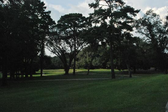 Inn at Killearn Country Club : Picture of the pretty nearby surroundings