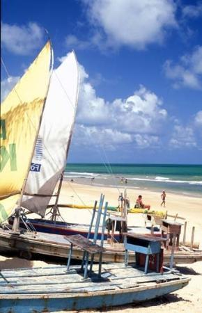 Natal, RN: Jangadas.  Small fishing boats.  Powered by sails.  They are  used all up and down this coast. S