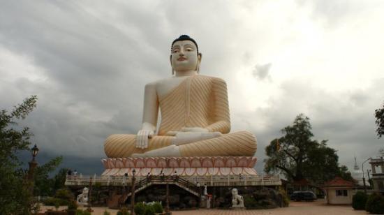 Bentota, Sri Lanka: Largest Buddha in Asia so we were led to believe.