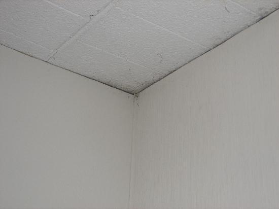 Howard Johnson Bartonsville/Poconos Area: mold on ceiling