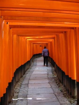 Kyoto, Japan: 10,000 orange torii up the mountain