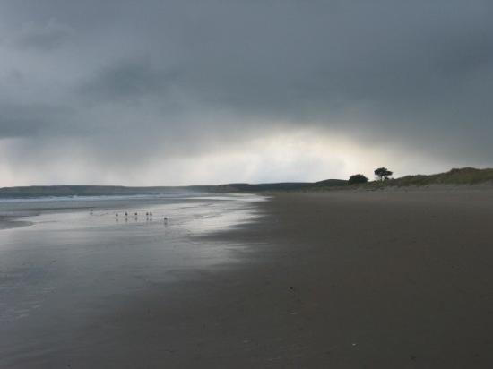 The coast toward Mendocino on a rainy day