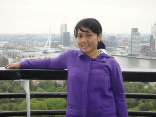 Euromast Tower: Keliatan kan jembatan erasmus?