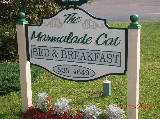The Marmalade Cat Bed & Breakfast: The sign