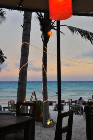 Zenzi Beach Bar & Restaurant: Evening at Zenzi (lightup coconuts)