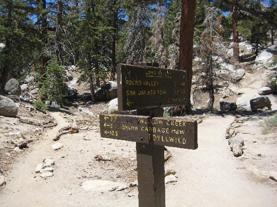 Palm Springs Aerial Tramway: Which way do I go?