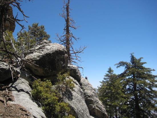 Palm Springs Aerial Tramway: Another great view