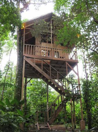 Tree Houses Hotel Costa Rica: Tree House #1