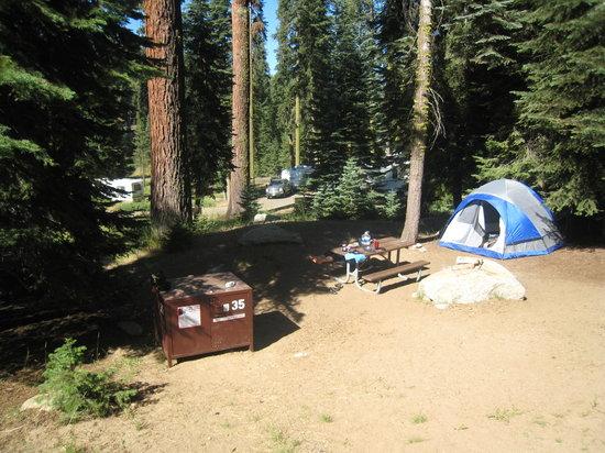 Dorst Campground: Campsite