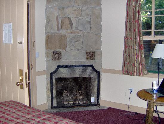 what is a ventless fireplace insert
