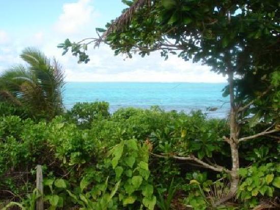 Matafonua Lodge: View from the fale