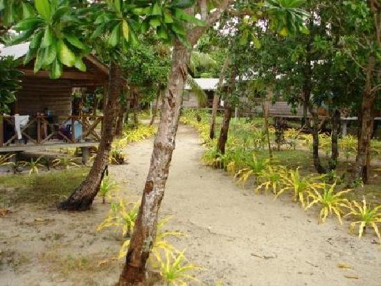 Matafonua Lodge: Fales from entrance