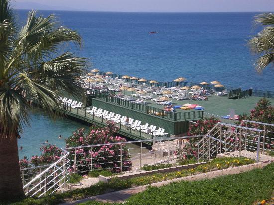 Palm Wings Beach Resort: Beach Sunbed Area
