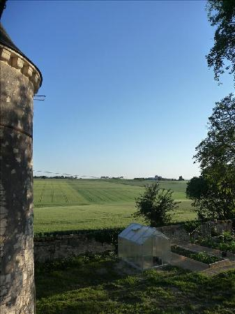Loire Valley Retreat - Chateau de Charge: view over fields
