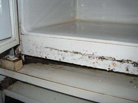 Sicul Perla: pulizia camere1