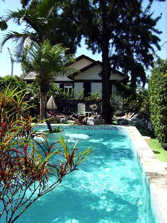 فيلا فيسينسيا: the pool [crane in distance FYI]
