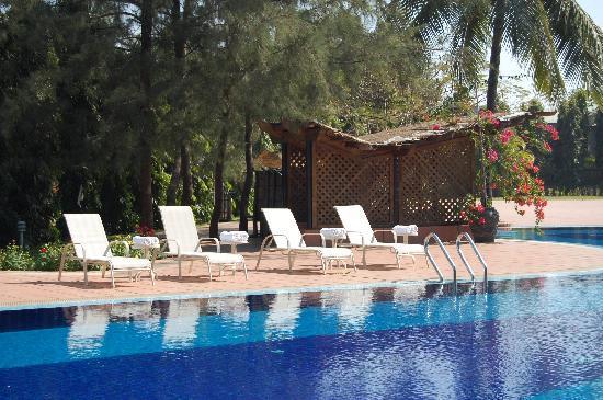 Swimming Pool Picture Of Seagull Hotel Cox 39 S Bazar Tripadvisor