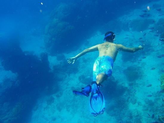 Reef Experience: me snorkling