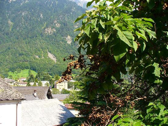 Biasca, Suisse : vista dalla finesta
