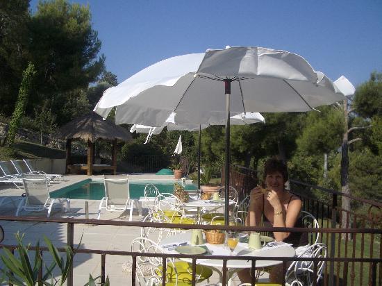 Villa Kilauea B&B : breakfast by the pool