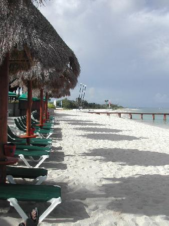 Occidental Cozumel: Beach - Looking South